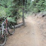 World's Best Trails