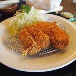 salmon fry set