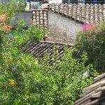 Lush gardens abound