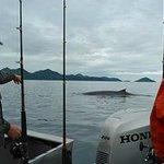 Whale breaching near boat