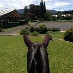 Tour a cavallo