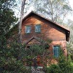 Pandini Cabin
