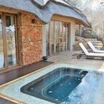Room plunge pool