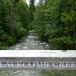 The walk along Blackcomb Creek is an excellent way to get to Lost Lake.