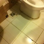 bagno con mattonelle rotte