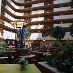 Main lounge/atrium