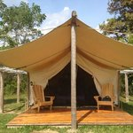 Elevated tent - Glamping @ Oakwood Escape
