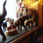 Elefants vid fönstret