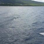 warm, crystal blue waters