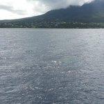 Nevis, St Kitts