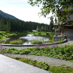 Pond in front of cafe in August