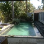 Our lovely salt water pool