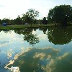 pond near the dam