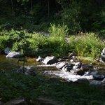 Creek and picnic area
