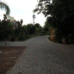 Driveway inside Posada Magnolia property