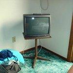 Dolphyn Motel