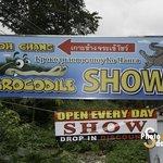 Crocodile Show Koh Chang