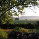 B&B Al Giardino di Rosi Foto