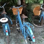 biciclette a disposizione della clientela
