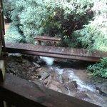 The stream!