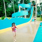 the highest slide in the waterpark