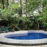 Einer  der  3 Pools  im tropischen Garten.