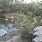 部屋から・・700坪の日本庭園