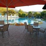 la piscine/jaccuzi et le jardin ombragé