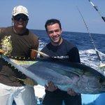 atun, yellowfin tuna
