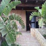 Photo of Oasis Resort
