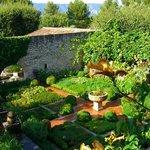 il giardino delle erbe aromatiche