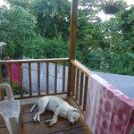 il terrazzino del rasta cottage