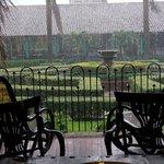 Jardin en dia lluvioso