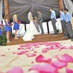 View of our Gazebo Wedding
