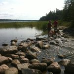 Mississippi River Headwaters, Lake Itasca State Park, MN