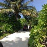 Caminos de la isla