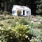 Caroline's flower garden