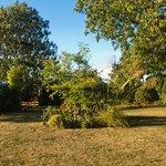 Pumphouse Cottage Garden