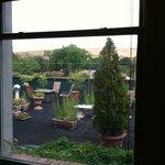 View onto rooftop garden