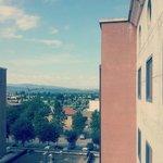 Vista dalla mia camera