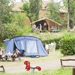 Les emplacements de camping en terrasse