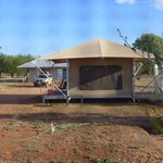 comfortable eco tents
