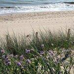 La plage des Cossonnes