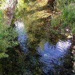 River passing Palomera
