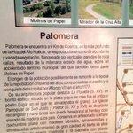 More about Palomera