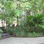 Otel bahçesinden bir görüntü