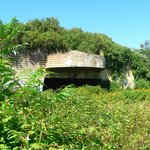 WWII Bunker -- Battery Steele ... you can hike here