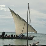 Dhow excursion