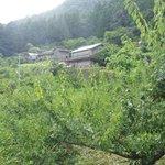 日本人が遠くに置き忘れてきた風景