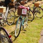 The Hen's Bike